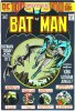 BATMAN (DC Comics)  n.254